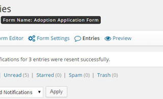 Gravity Forms – Resend Email Notifications
